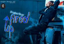 Sugar Boy - Fired Up (Prod. Dizzy)