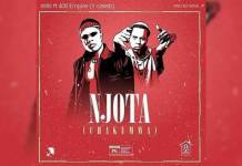 Willz ft. Y Celeb - Njota (Chakumwa)