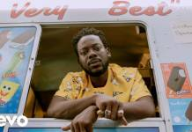 Adekunle Gold - Young Love (Official Video)