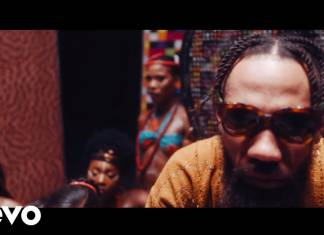 Phyno ft. Flavour - Vibe (Official Video)