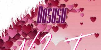 Dosusu ft. Mr Ville - Ni 2-Two