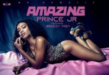 Prince Jr ft. Breezy Trey - Amazing