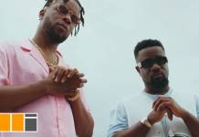 Sarkodie ft. Maleek Berry - Feelings (Official Video)