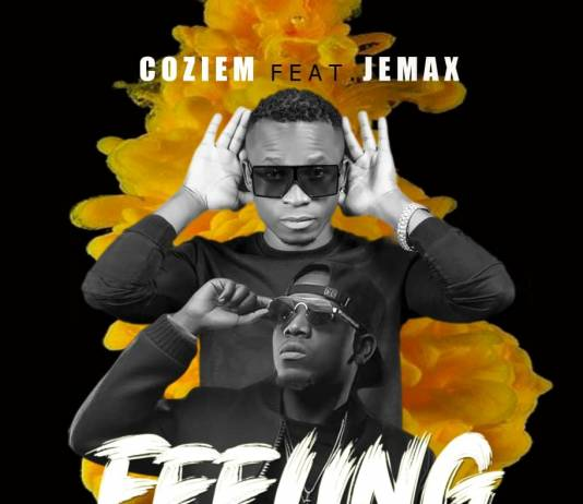 Coziem ft. Jemax - Feeling