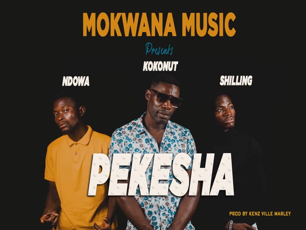Mokwana Music - Pekesha
