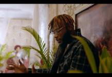 Dremo ft. Davido - Mabel (Official Video)