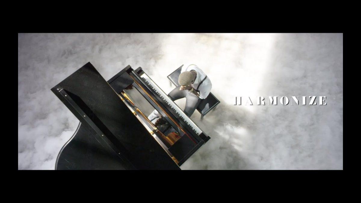 Harmonize - Nishapona (Official Video)