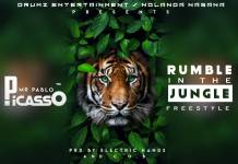 Picasso - Rumble in the Jungle