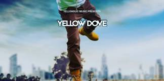 Yellow Dove - Jumpa