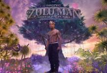 ALBUM: Nasty C - Zulu Man With Some Power