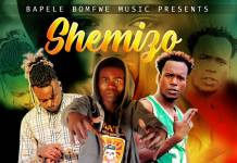 Shemizo ft. Mr Turner & Y Celeb - Carolina