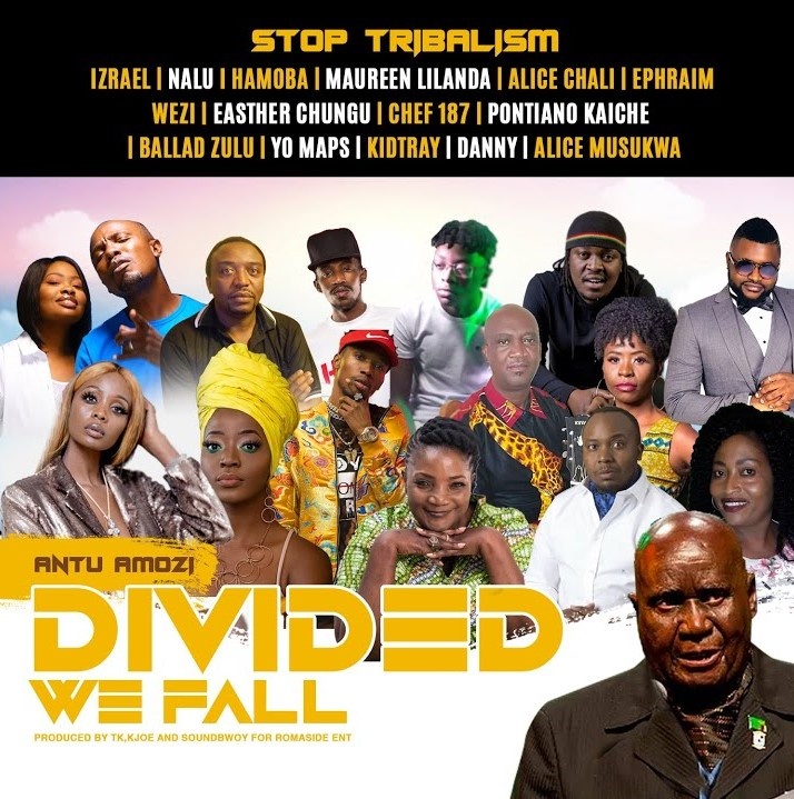 Various Artists - Divided We Fall - #StopTribalism