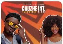 Chuzhe Int ft. Tianna - Wekafye (Prod. Kofi Mix)
