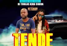 DJ Thulas King Cobra ft. Petershy - Tende