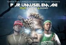 P Jr. Umuselemani ft. Ray Dee & Dizmo - Akanwa