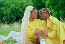 Rayvanny ft. Zuchu - Number One (Official Video)