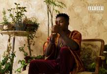 Reekado Banks - Off The Record [EP]