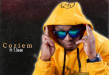 Coziem ft. T-Sean - Money Mayweather