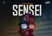 Trigga Dopely - Sensei (Cover)
