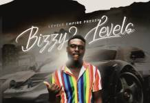 Bizzy Levels - Kubantu