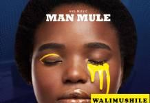 Man Mule - Walimushile (Prod. Sichi YK)