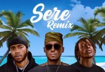 DJ Spinall ft. 6LACK & Fireboy DML - Sere (Remix)