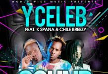 Y Celeb ft. K Spanna & Chile Breezy - Sound