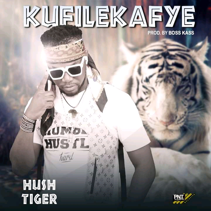 Hush Tiger - Kufilekafye